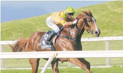 ?? Photo / Trish Dunell ?? Masetto races clear to win at Ruakaka last month.