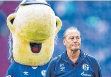 ?? FOTO: ROLF VENNENBERND/DPA ?? Ob Huub Stevens Schalke das Glück zurückbringt?