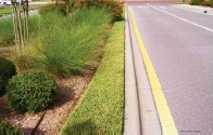 ??  ?? Above: Replace the narrow strip of turfgrass with an alternative groundcover or mulch. Left: Remove misplaced plantings that are water quality risks.