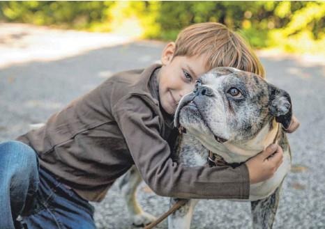 ?? FOTO: CHRISTIN KLOSE/DPA ?? Hunde bekommen oft menschliche Namen: Das zeigt, wie eng die Tier-Mensch-Beziehung geworden ist.