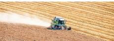 ?? FOTO: ARMIN WEIGEL/DPA ?? Unternehmen-Holdings, hinter denen oft Konzerne aus anderen Branchen stehen, kaufen systematisch Agrarfächen auf.