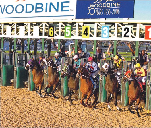 ?? MICHAEL BURNS PHOTO ?? They're off! Wood­bine's main track had a new look to it last night for the first races on the $10 mil­lion Poly­track sur­face. It's the sec­ond North Amer­i­can fa­cil­ity to have it.