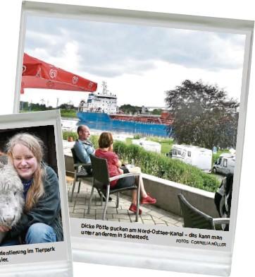 ?? FOTOS: CORNELIA MÜLLER ?? Dicke Pötte gucken am unter anderem Nord-Ostsee-Kanal – das kann man in Sehestedt.
