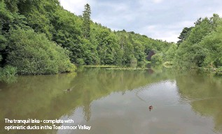 ??  ?? The tranquil lake - com­plete with op­ti­mistic ducks in the Toad­smoor Val­ley