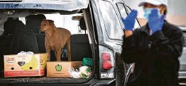 ?? Marie D. De Jesús / Staff photographer ?? A dog waits as its owner brings back goods provided by the Houston Food Bank on Sunday. The nonprofit estimated it gave 25 to 30 pounds of food to 5,000 cars.