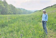 ??  ?? Donna Cox is part of a growing movement to restore Britain's meadows, saying she feels 'pure joy' at the proliferation of flowers and wildlife