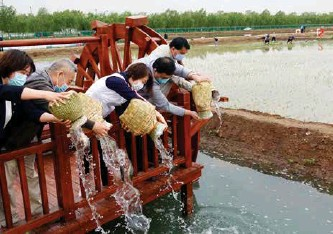 ??  ?? 市民向水塘投放鱼苗