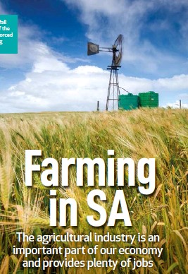 ??  ?? Because South Africa's rainfall isn't regular in large parts of the country, many farmers are forced to access groundwater using boreholes and wind pumps.
