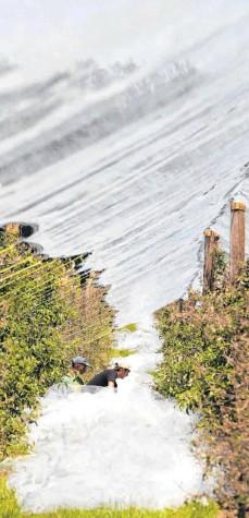 """?? FOTO: ROLAND RASEMANN ?? Obstbauern in Aichach bringen Hagelnetze an. Für den unkomplizierten Anbau wurden Forderungen von """"Rettet die Bienen""""entschärft."""