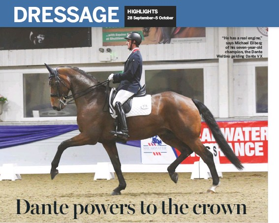 """??  ?? """"He has a real engine,"""" says Michael Eilberg of his seven-year-old champion, the Dante Weltino gelding Dante VX"""