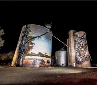 ?? PHOTO: KDog Photography ?? ENDANGERED: This mural of Milli the endangered Barking Owl was created after the artist studied more that 300 photographs of the bird.