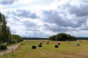 ??  ?? nyanserna skiftar i Ljunghems odlingslandskap.