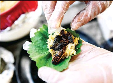 ?? AFP ?? Fried cicadas are rolled into a sushi roll by Chef Bun Lai at Fort Totten Park in Washington, DC on May 23.