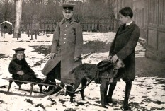 ??  ?? ■ Manfred and Lothar keeping an eye on the youngest brother, Bolko, as he enjoys a ride on a sled pulled by one of the family dogs.