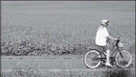 ?? BOB BROWN/TIMES-DISPATCH ?? A cyclist rides along the Virginia Capital Trail in the Varina area of eastern Henrico County. The trail has proved a popular escape during the pandemic, counting more than amillion uses so far during 2020.