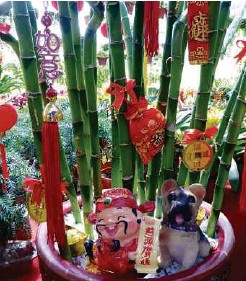 ??  ?? Decorated pot of lucky bamboos with wealth god and dog to usher in the new year.