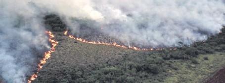 """??  ?? Dos hileras de fuego convergen en la Reserva forestal """"Tatí Yupí"""", ubicada a orillas del lago Itaipú."""