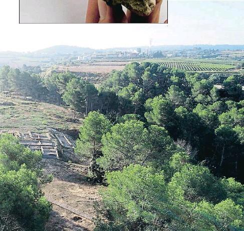 ?? . ?? El más importante. En la imagen inferior, una panorámica del yacimiento íbero de la Font de la Canya de Avinyonet del Penedès, donde se ha desenterrado el trozo de cabeza de león y un gran almacén-cava soterrado