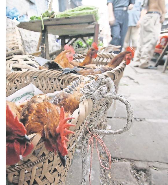 ??  ?? Hat sich das Virus von einem Lebendtiermarkt in China verbreitet? Geflügelverkauf in Chongqing. FOTO: RAINER WEISFLOG/IMAGO IMAGES