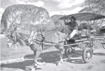 ??  ?? Yusmani Garcia, a blacksmith and tour guide, rides in his horse carriage in Vinales, Cuba.
