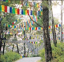 ?? Photographs by Ann Summa ?? PRAYER FLAGS, new and old, hang over the road in Palampur, India, that leads to the Palpung Sherabling monastery.