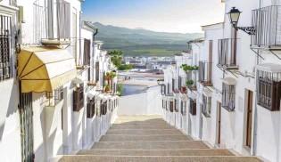 ??  ?? Calle de Osuna y vista de campos de olivos