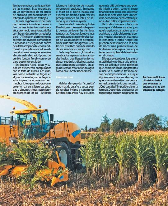 ??  ?? Por las condiciones climáticas habrá que extremar la eficiencia en la producción de forrajes.