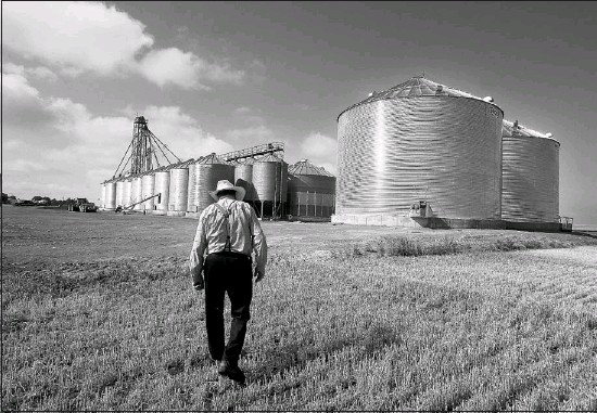 """?? Photos, Leah Hennel, Calgary Herald ?? """"I didn't even know that this stuff can happen. It's just a bonus,"""" Edward Waldner of the Wild Rose Hutterite colony says of the carbon trading cash they receive."""
