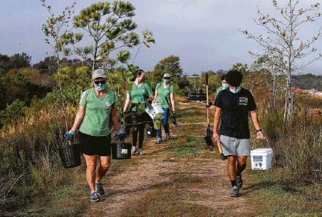 """?? Godofredo A. Vásquez / Staff photographer ?? Houston Wilderness volunteers and staff get ready to plant """"super trees"""" at the Bayport Terminal Berm."""