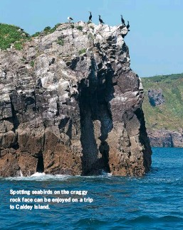 ??  ?? Spotting seabirds on the craggy rock face can be enjoyed on a trip to Caldey Island.