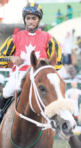 ?? RICARDO MAKYN /STAFF PHOTOGRAPHE ?? ROAD WI SEH (O'Brien White) in the winners' enclosure after his win in yesterday's feature race, the Thoroughbred Owners and Breeders Association of Jamaica Trophy event at Caymanas Park.