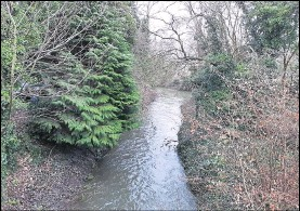 ??  ?? The River Stour at Queen Mother's Park