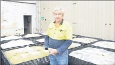 ??  ?? Long-held interest . . . Ian Bertram at the Girgarre recycling business Resource Resolution.