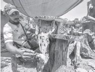 ?? — Gambar Bernama ?? MEJA KAYU: Mohd Zalizi atau mesra dipanggil Abe G, membersihkan sebahagian set meja kayu yang dihasilkan daripada kayu terbuang ketika ditemui Bernama di G Landskap di Jalan Pasir Mas-Rantau Panjang, baru-baru ini.