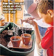 ??  ?? Sow fun: Trees and shrubs are often best sown at this time of year