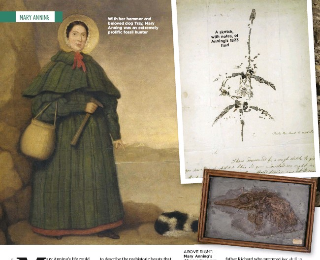 ??  ?? With her hammer and beloved dog Tray, Mary Anning was an extremely prolific fossil hunter A sketch, with notes, of Anning's 1823 find ABOVE RIGHT: Mary Anning's discoveries were great strides in palaeontology; the remains of fish can be seen in this ichthyosaur