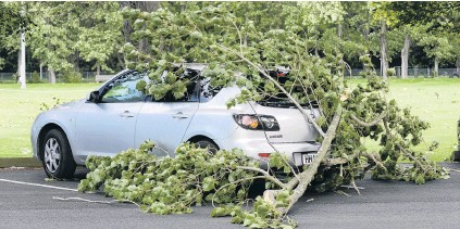 ?? PHOTOS: GERARD O'BRIEN ?? Smashing time . . . A large tree limb fell in high winds and broke the rear window of a parked car, in Logan Park Dr, on Saturday.