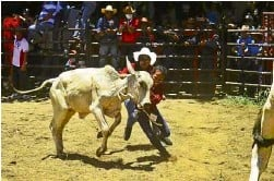 """?? —PHOTOS BY SHAN GABRIEL APULI ?? Participants in the """"carambola"""" demonstrate how ranch hands tackle misbehaving cows."""