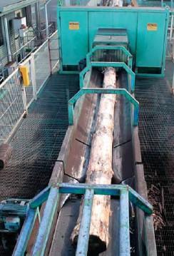 ??  ?? Debarking salvage logs at Hyne Mill