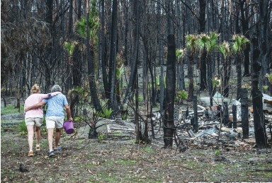 ??  ?? Budawang Yuin elder Noel Butler and his wife, Trish, inspect damage at Nura Gunyu, an Aboriginal education centre near Milton. Almost daily they find new seedlings bursting through the ash and soil.