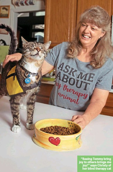 """??  ?? """"Seeing Tommy bring joy to others brings me joy!"""" says Christy of her blind therapy cat"""
