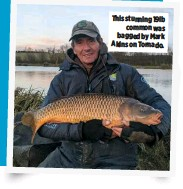 ??  ?? This stunning 19lb common was bagged by Mark Akins on Tornado.