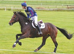 ??  ?? Zaragoza II (by Cevin Z) finishes on her dressage score to secure second in the seven-year-old championship with Gaspard Maksud