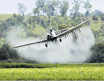 ?? ARCHIVO ?? La meta del Gobierno es reducir en un 50% los cultivos ilícitos a 2023.