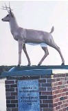 ??  ?? The original deer statue mounted in 1990 at the New Waterford Fish and Game Sportsmen's Memorial Park in River Ryan, in memory of the dedicated and deceased members. The statue was destroyed by vandalism about 15 years ago and the base has stood empty since.