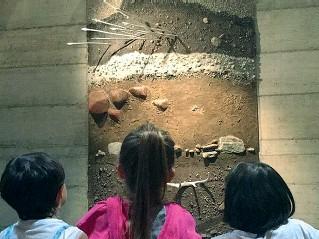 ??  ?? Curiosità A Fiavè al Villaggio delle Palafitte visite guidate e laboratori per scoprire come vivevano donne, uomini e bambini nell'antichità