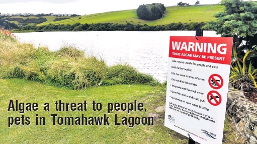 ?? PHOTO: PETER MCINTOSH ?? Beware . . . Warning signs at Tomahawk Lagoon yesterday warn potentially toxic algae has been found in it.