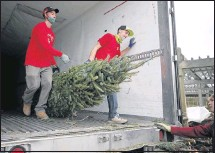 ?? ALEXA WELCH EDLUND/ TIMES-DISPATCH ?? Will Livelsberger (fromleft), Rick Mills and Jacob Hewitt unload a tree off a truck at The Great Big Greenhouse, which started receiving Christmas trees early, according to a store manager.