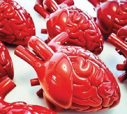 ??  ?? Emilio Garcia (Tarragona, Spagna, 1981), Red Brain Heart (2015, pittura acrilica su resina vinilica): da sempre affascinato dalla cultura pop e dai processi cognitivi, Garcia esplora quella che definisce «la neuroplasticità del cervello» per...