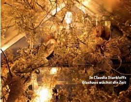 ??  ?? In Claudia Starkloffs Glashaus wächst die Zeit